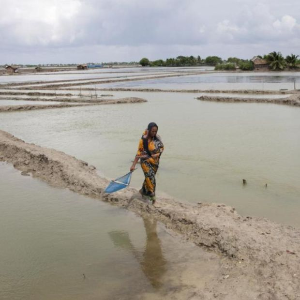 Climate change: Bangladesh is particularly vulnerable. Photograph: Probal Rashid/LightRocket via Getty
