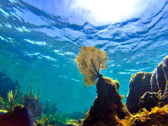 A new analysis shows that ocean temperatures are on the rise, and they are going up faster than once thought.