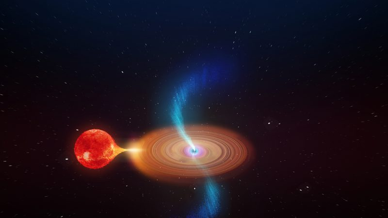 Red star feeding black hole accretion disk, with wobbling jets coming from the hole.
