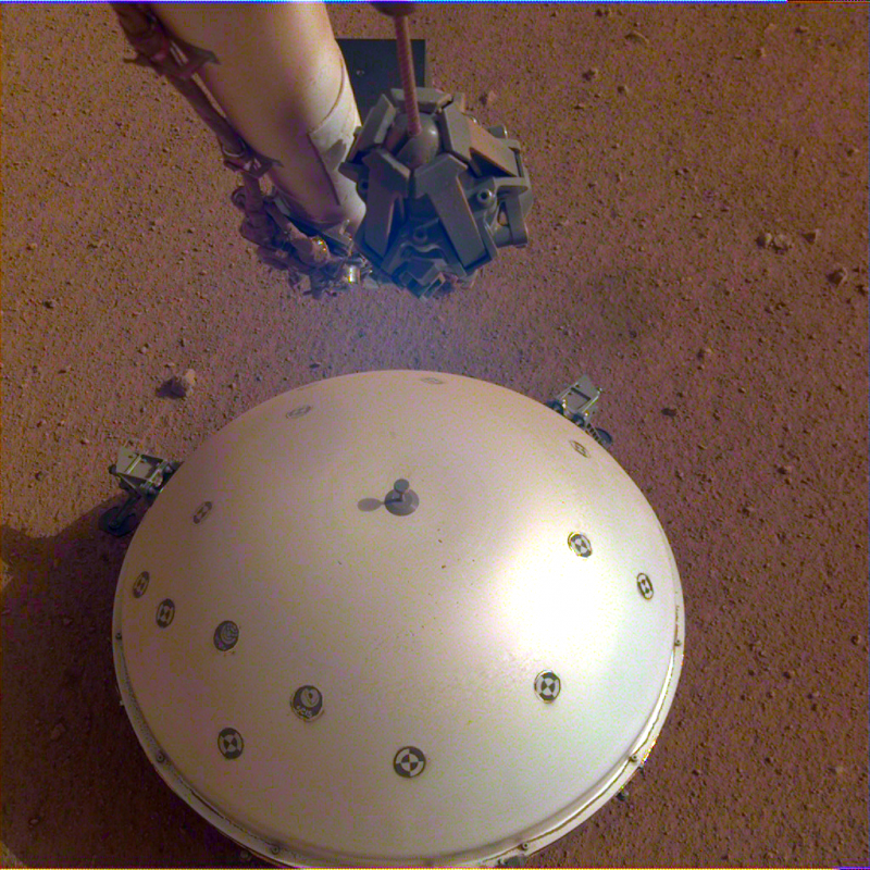 Shiny hemispherical white object with dark spots seen from above against red soil.