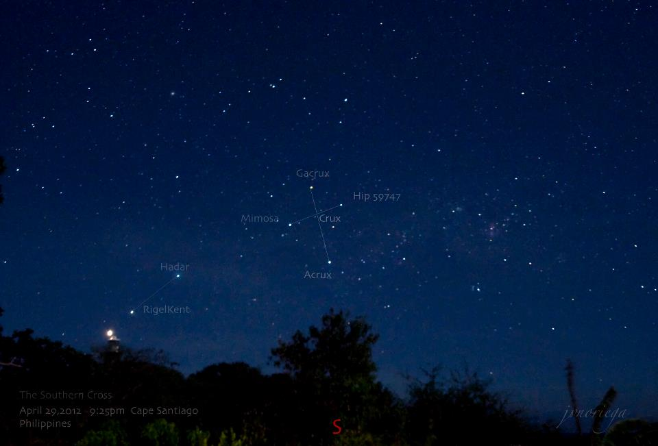 Star field above trees on horizon showing Southern Cross.