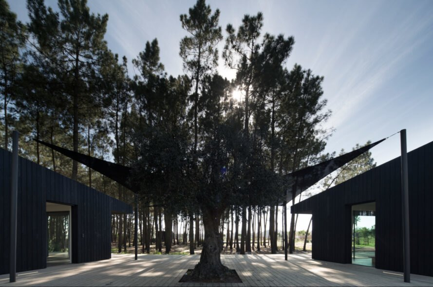 large black sun shades between two black cabins