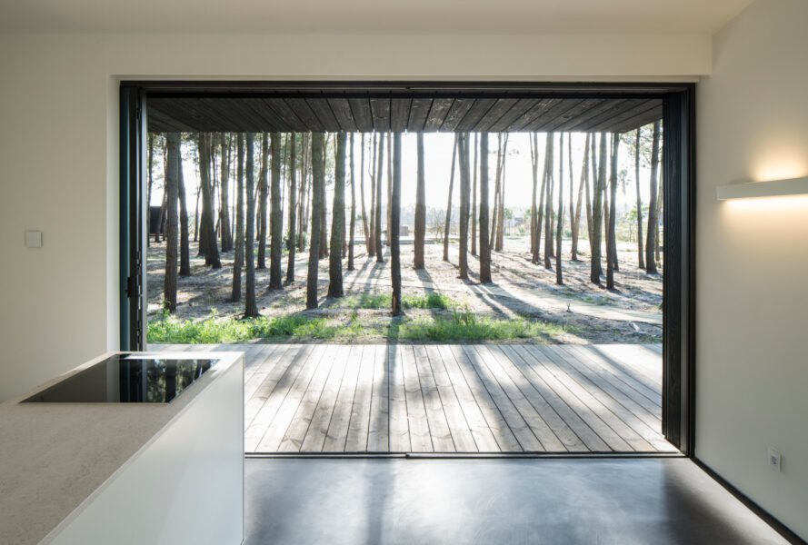 wide opening of cabin leading out to forest