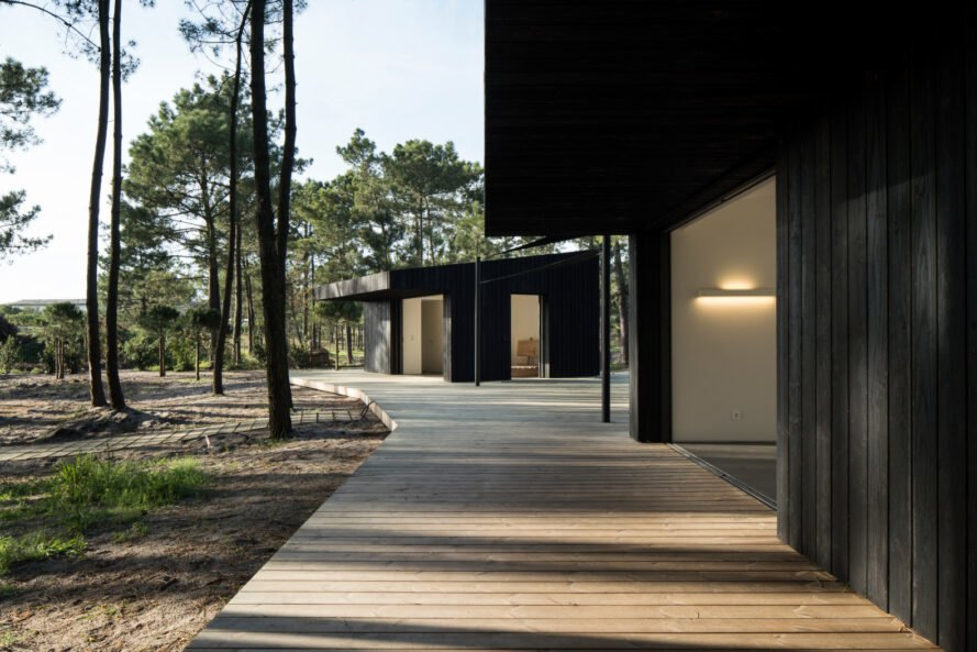 dual black cabins surrounded by trees
