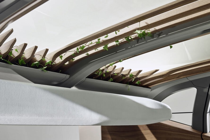 rendering of wood roof pergola growing plants on a car