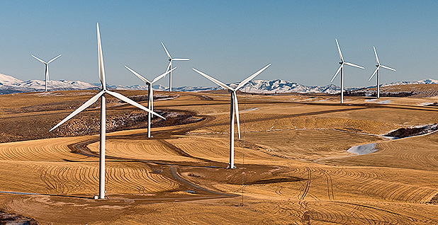 Wind farm. Photo credit: Department of Energy/Wikipedia