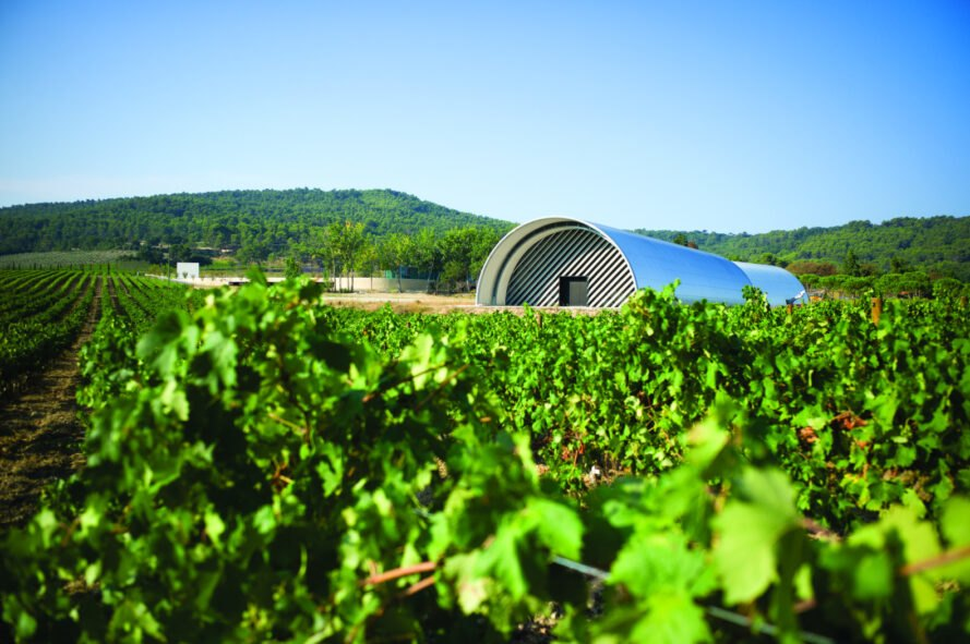 domed building in middle of vineyard