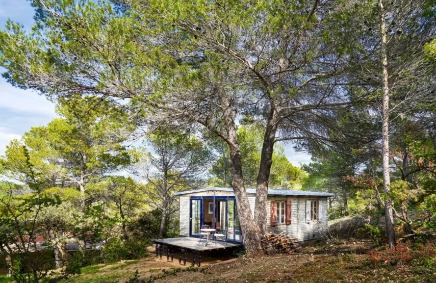 tiny wooden cabin in forest