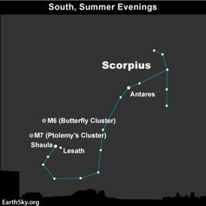 Diagram of constellation Scorpius with stars labeled.