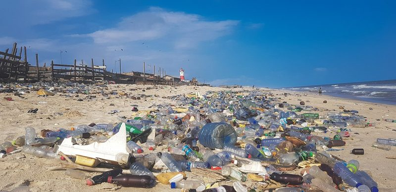 A beach covered with plastic trash.