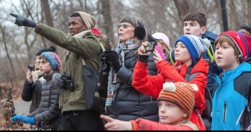 Group of people in winter jackets and hats, two of them pointing up.