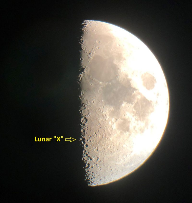 Half-lit moon, with tiny x-shaped light feature at line between light and dark.
