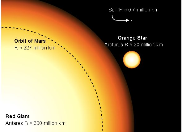 Part of gigantic star with much smaller circle for Arcturus and dot labeled the sun.