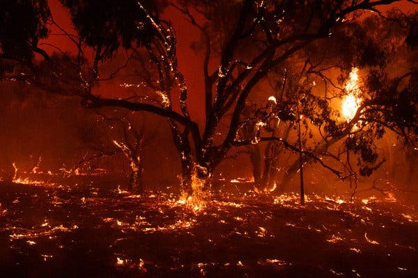 Burned bush land on the outskirts of Bredbo, Australia, this month.