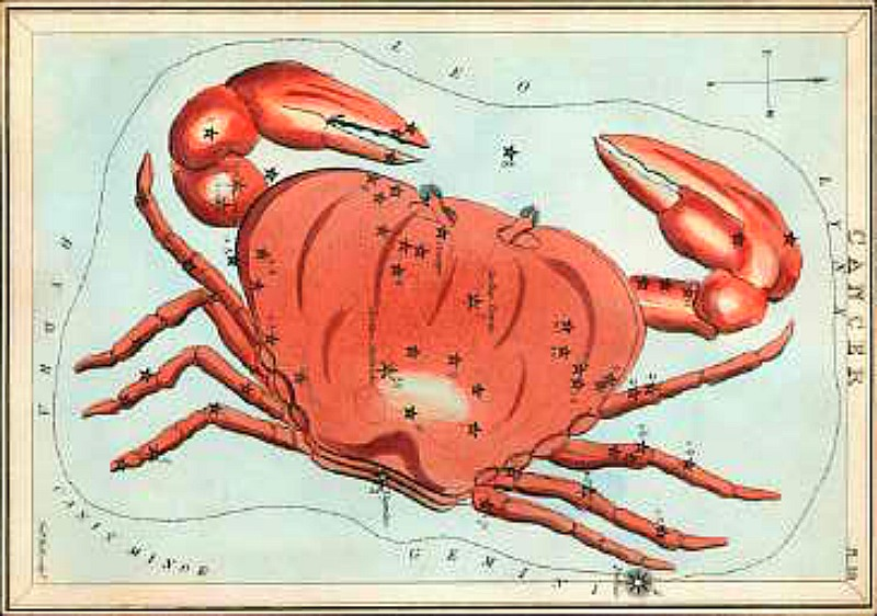 Antique etching of large red crab on star chart sprinkled with black stars of constellation.