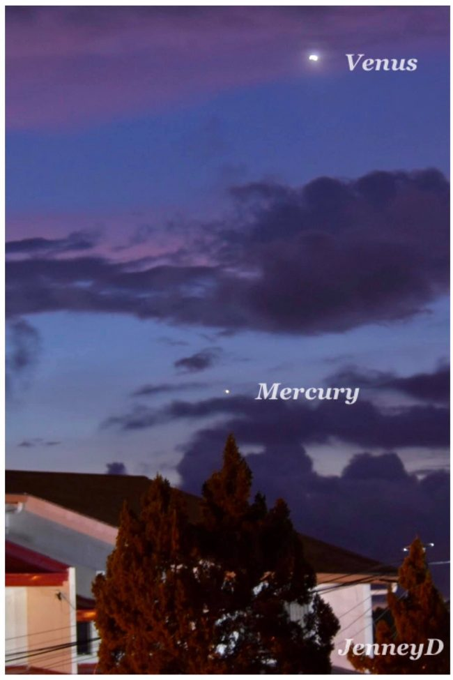 Very bright Venus in a twilight sky, and Mercury below Venus, above rooftops and trees.