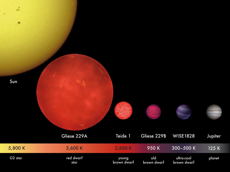 Artist's concept of stars of different sizes and masses, labeled.