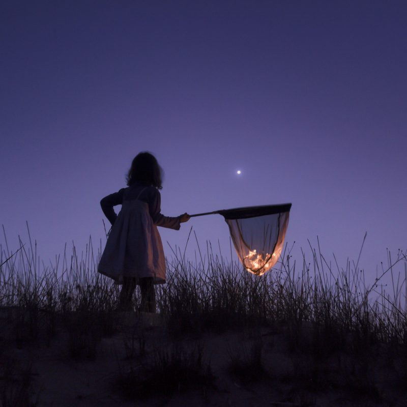 Child with butterfly net containing several stars, star in deep blue sky just above net.