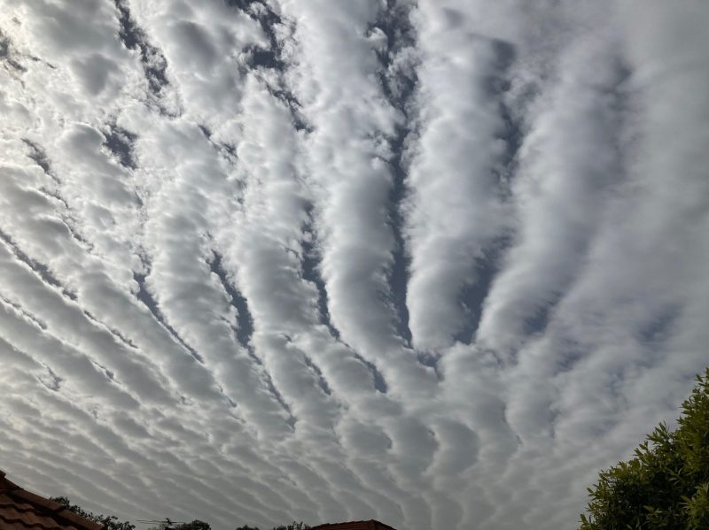 Fanned-out stripes of clouds.