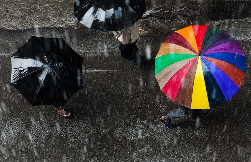 View from above of rainy street with two black umbrellas and a brilliantly colored striped umbrella.