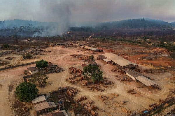 A logging operation in Moraes Almeida, a town on the Trans-Amazonian Highway in Pará State, Brazil, last year.
