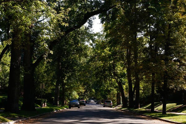 Cheesman Park, southeast of the downtown area, is one of the city's oldest neighborhoods.
