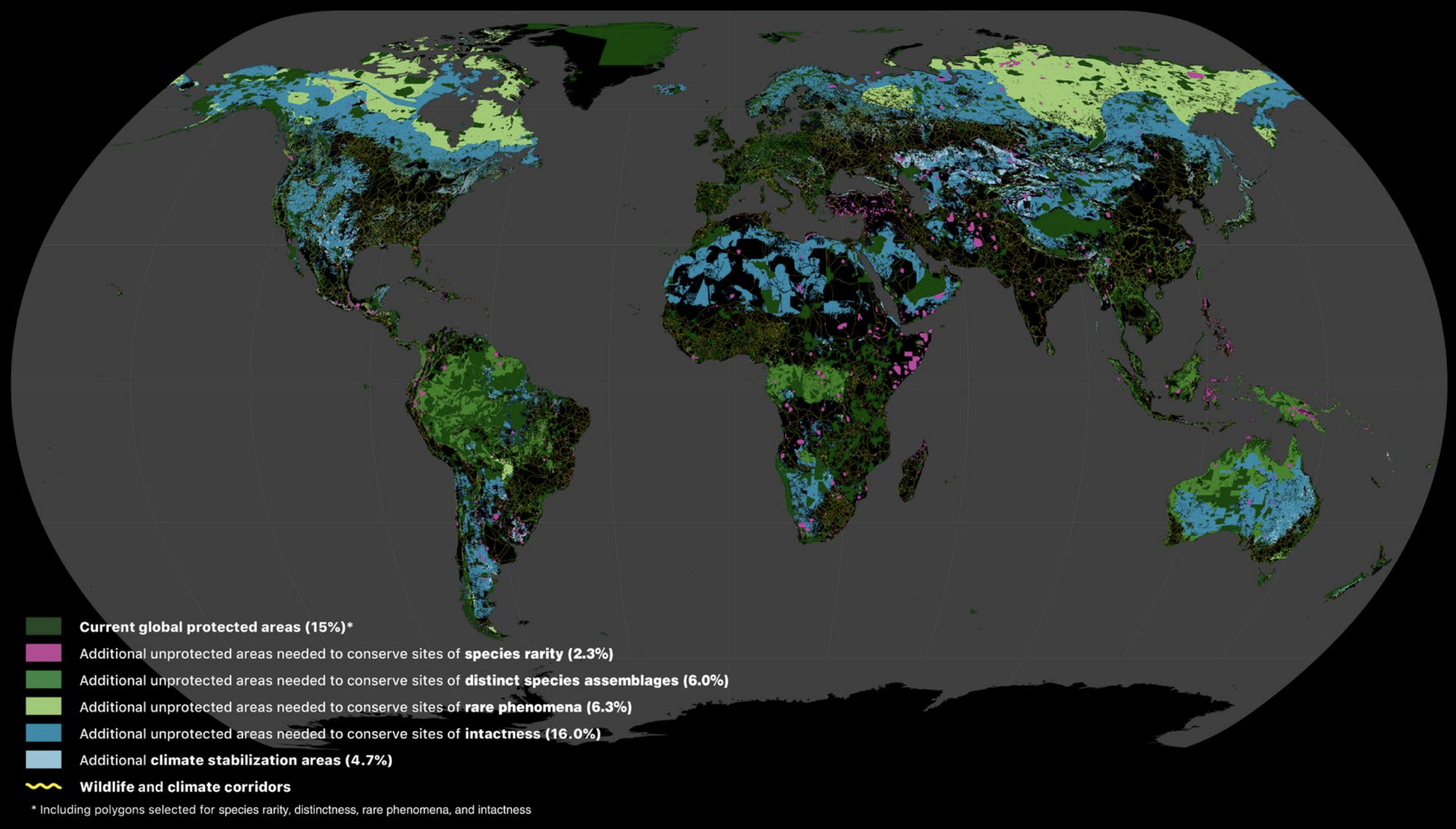 Areas of the terrestrial realm where increased conservation action is needed to protect biodiversity and store carbon. Numbers in parentheses show the percentage of total land area of Earth contributed by each set of layers. Unprotected habitats drawn from the 11 biodiversity data layers underpinning the Global Safety Net augment the current 15.1% protected with an additional 30.6% required to safeguard biodiversity. Additional CSAs add a further 4.7% of the terrestrial realm. Also shown are the wildlife and climate corridors to connect intact habitats (yellow lines). Data are available for interactive viewing at www.globalsafetynet.app. Image from Dinerstein et al., 2020.