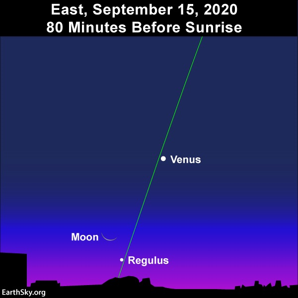 Waning crescent moon and star Regulus below Venus on morning of September 15, 2020.