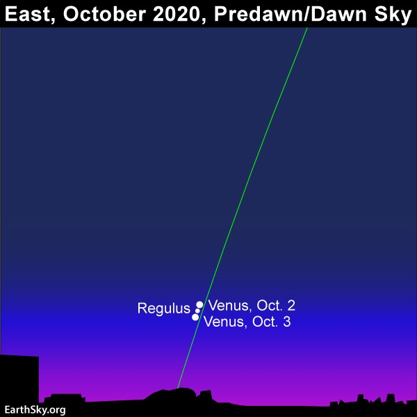 Conjunction of Venus and Regulus in early October 2020.