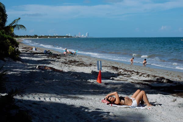 Low-lying Key Biscayne saw a large drop in home sales from 2012 to 2018, with the areas most vulnerable to rising seas experiencing the largest decrease.