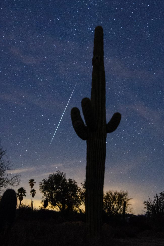 A tall saguaro cactus is the foreground for a long white streak in a starry sky.
