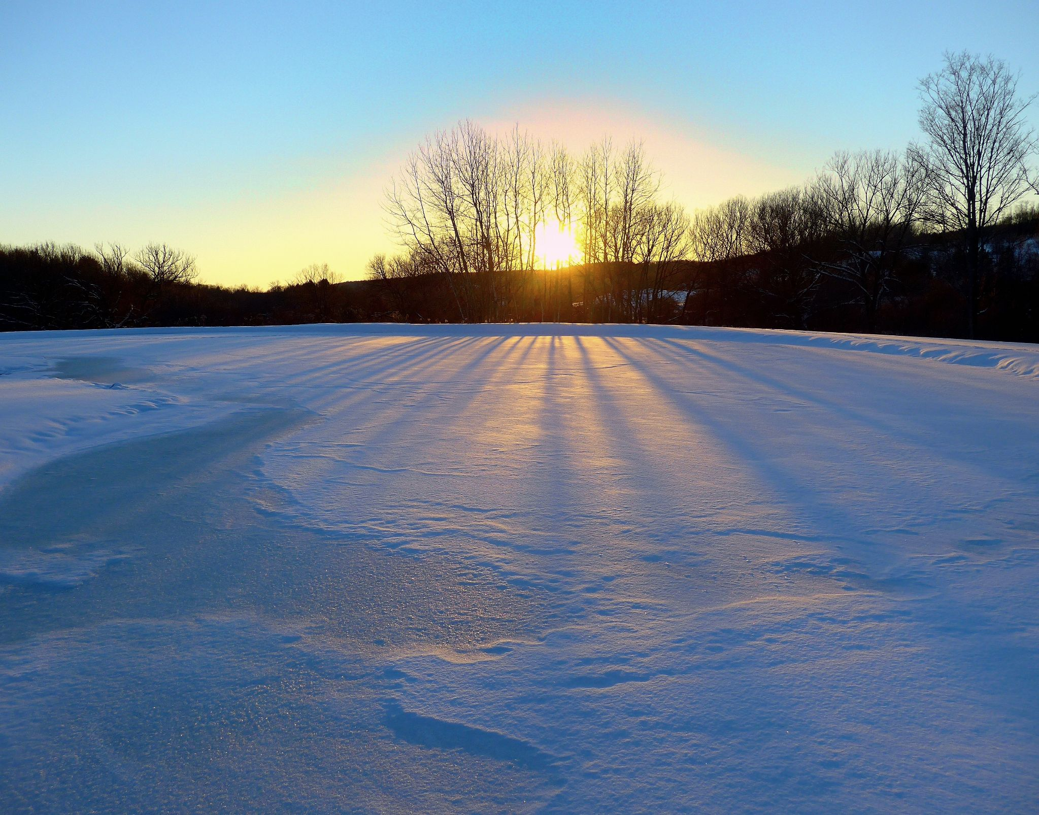 Sun through thin trees in distance with long shadows over level snowy surface.