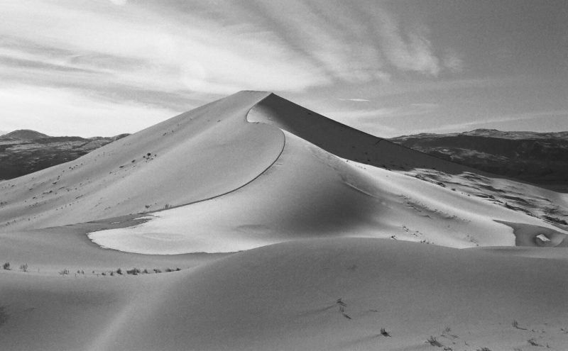 Swooping dune with dark line along the curved top.
