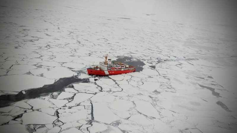 Wide field of ice with red ship making a path of dark water among the floes.
